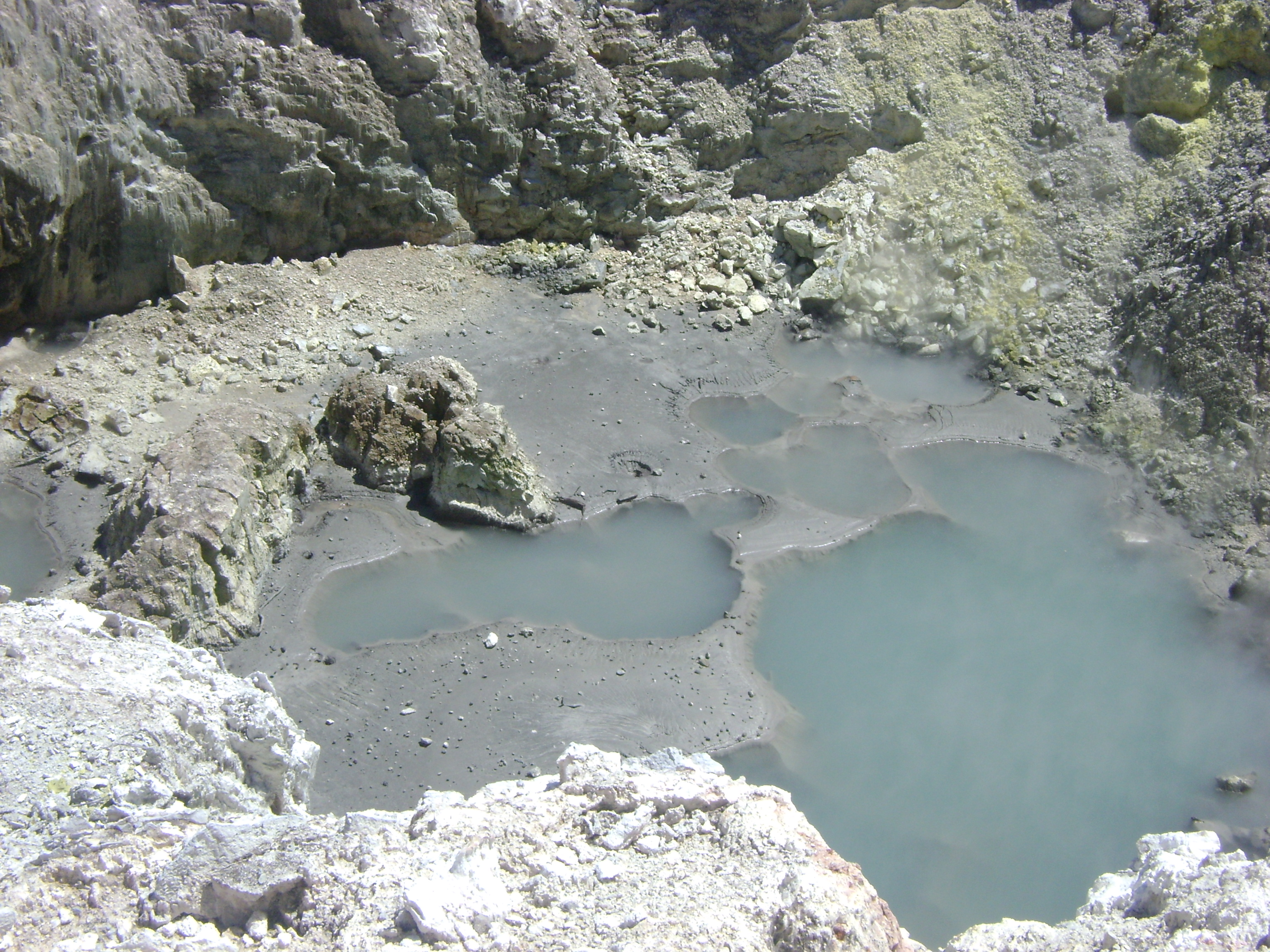 bird's nest crater