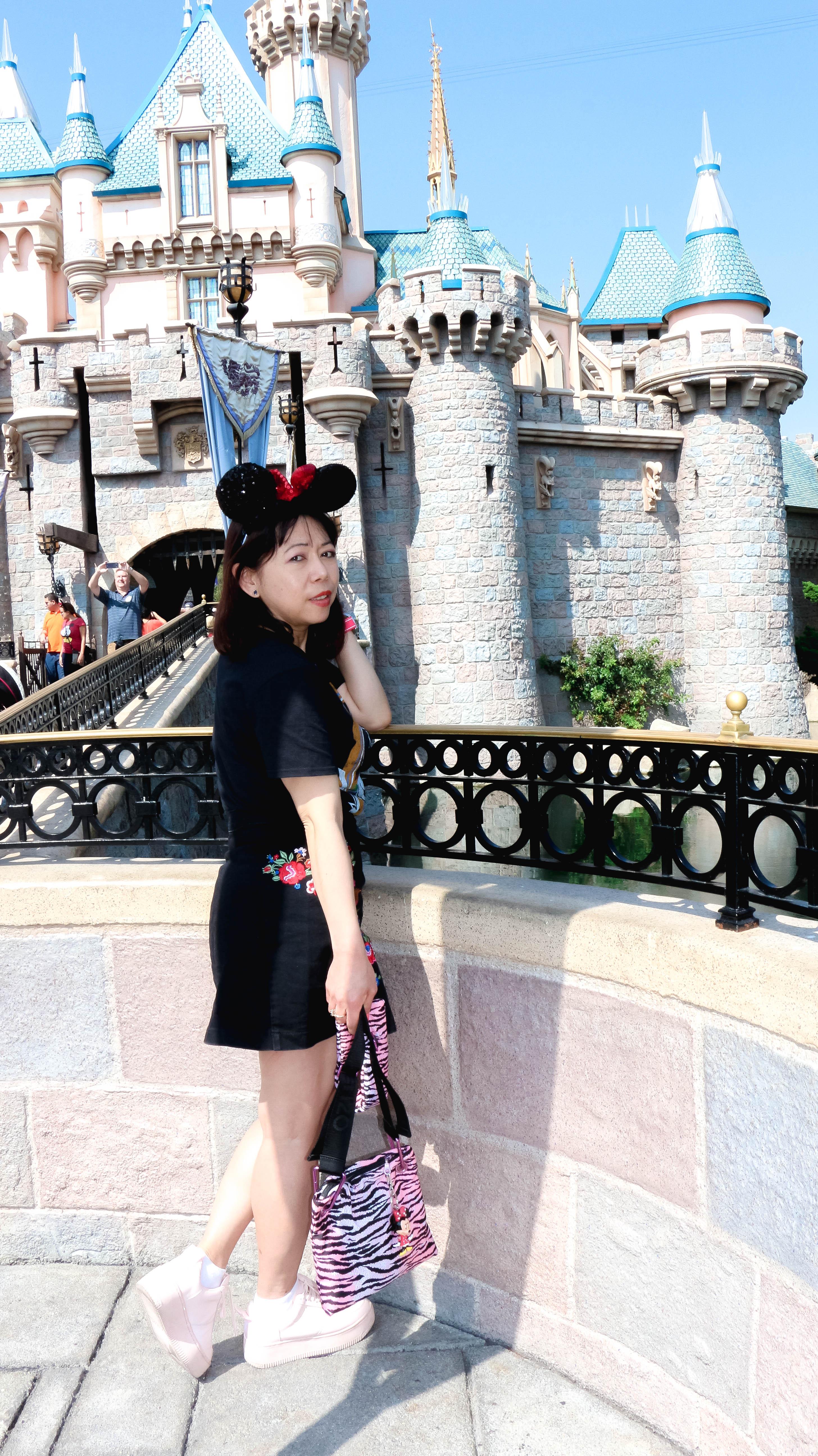 Disneyland Castle Anaheim