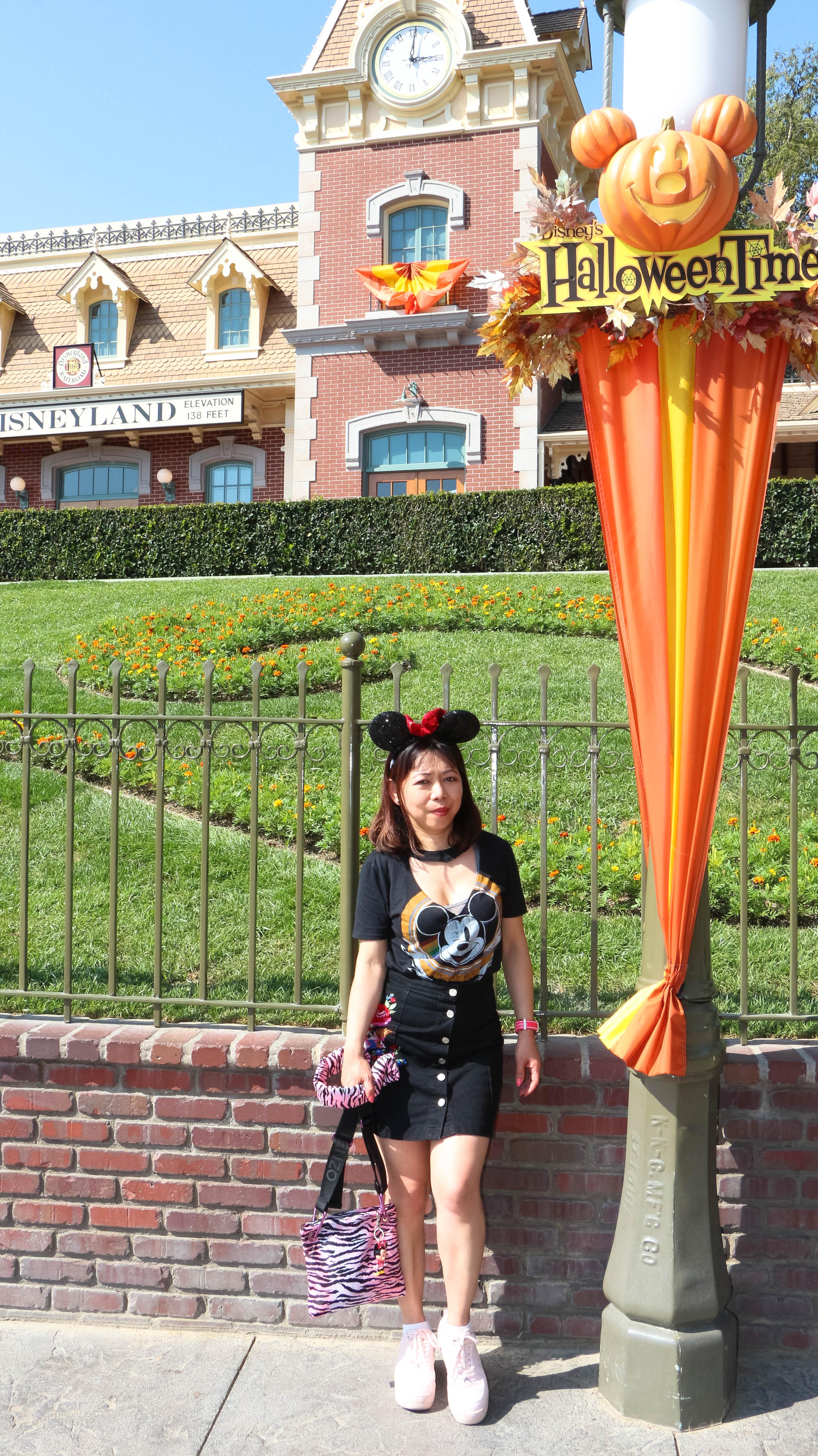 Disneyland Mickey Mouse landscape