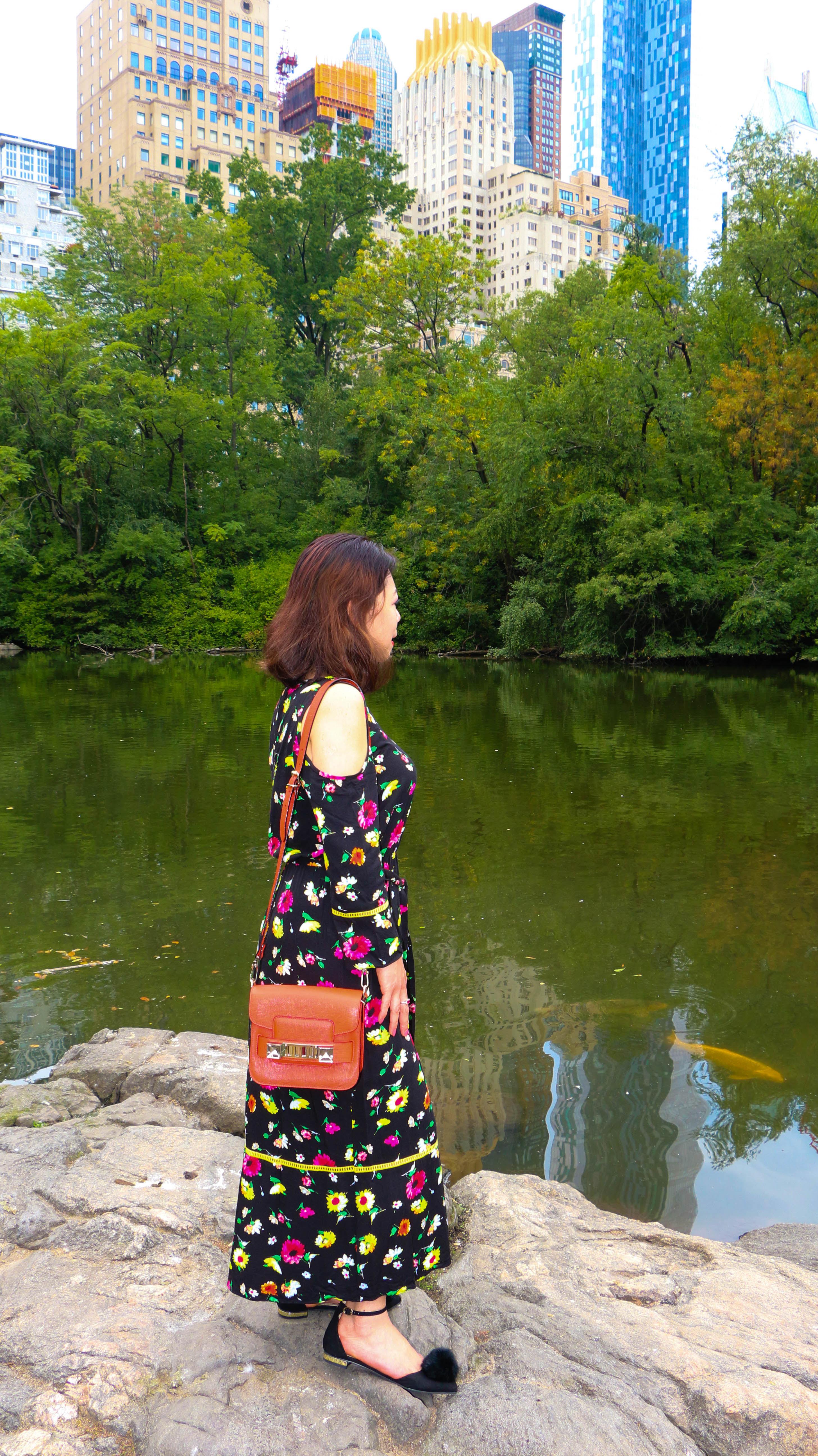 Central Park blog