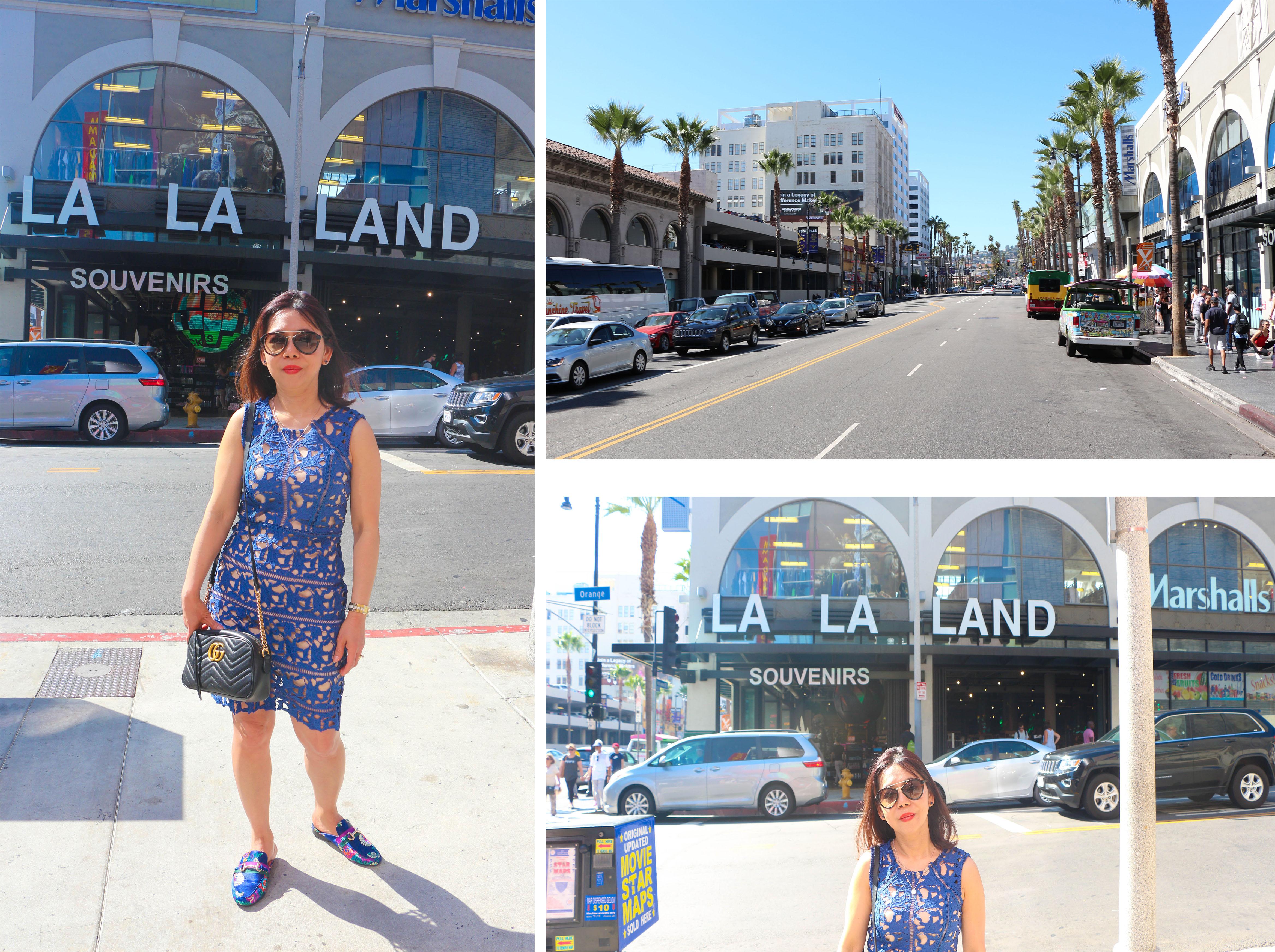 La la land blog