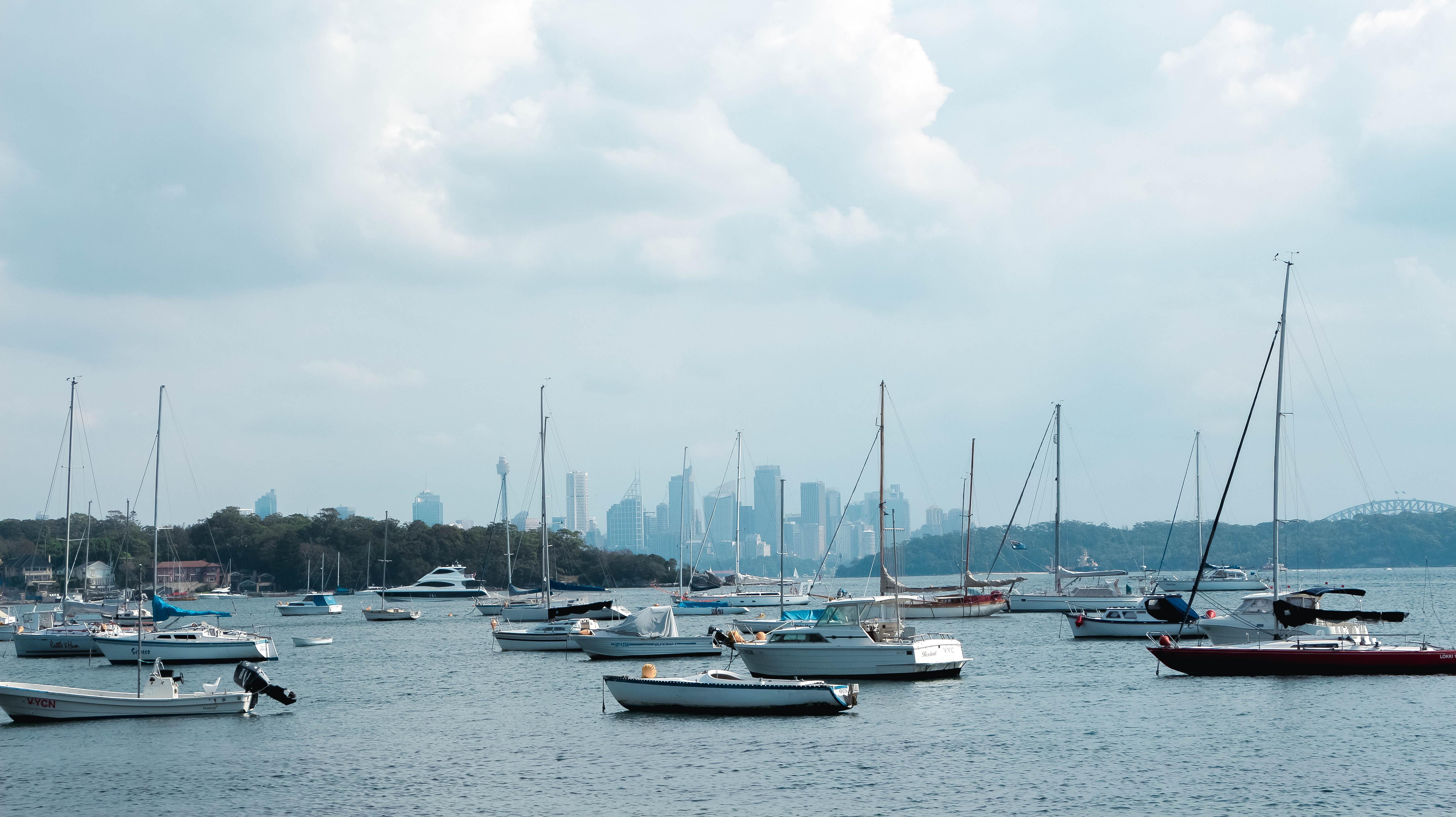 Watsons Bay blog
