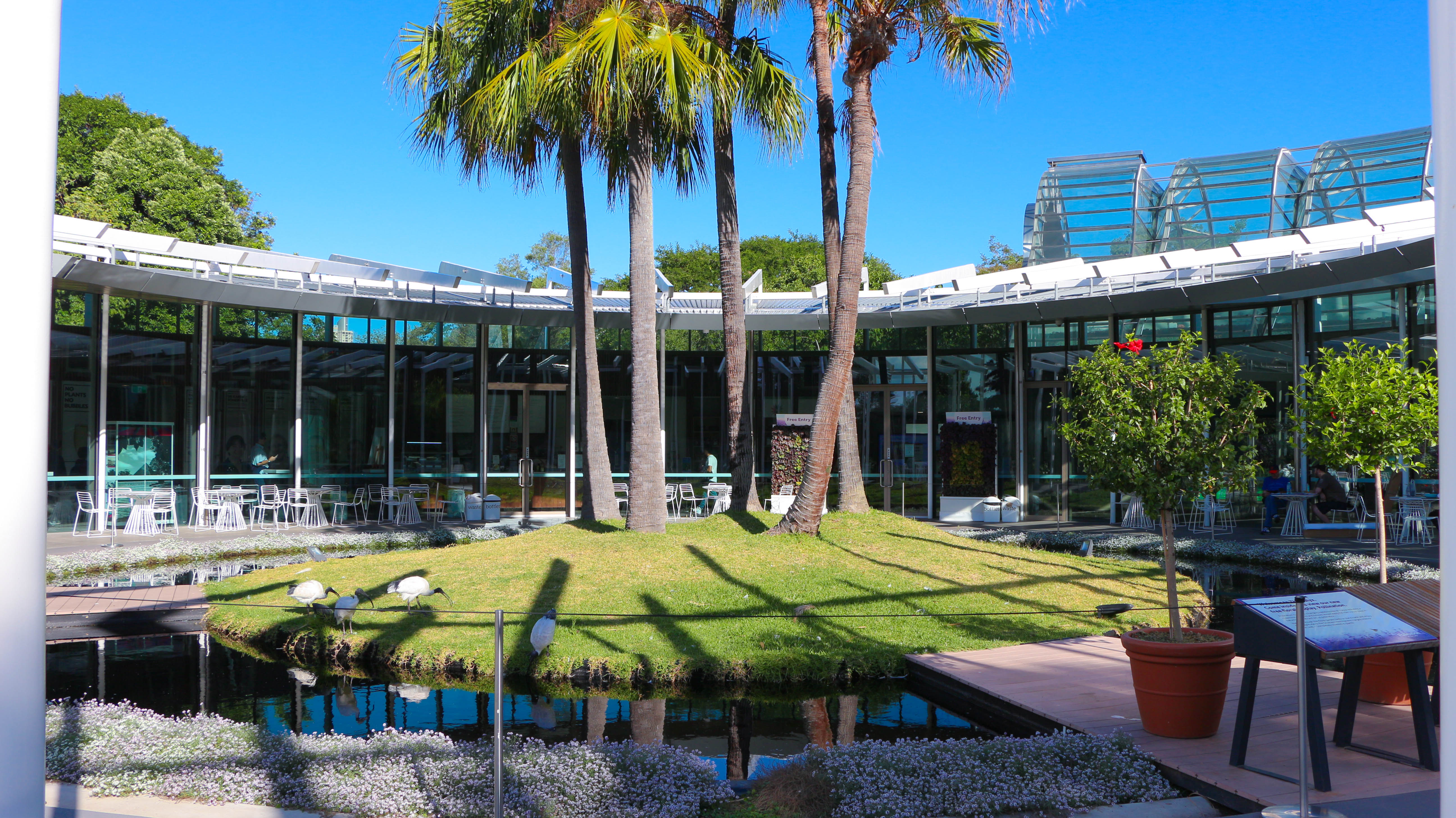 Calyx building in Royal Sydney Botanic Garden