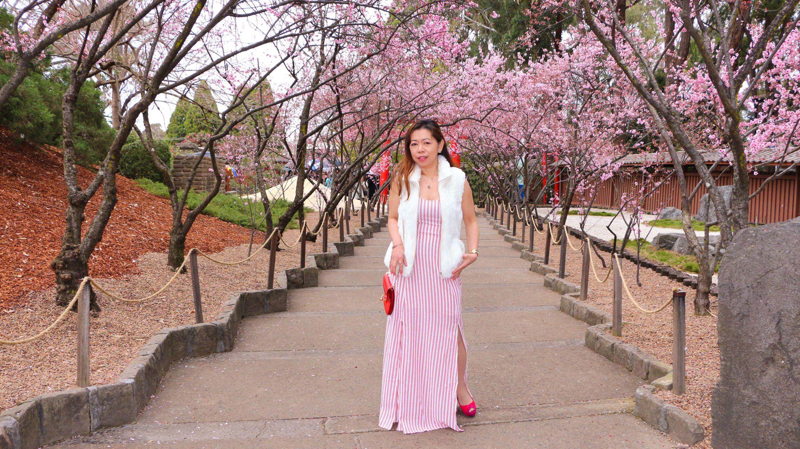 What to wear in Cherry blossom garden