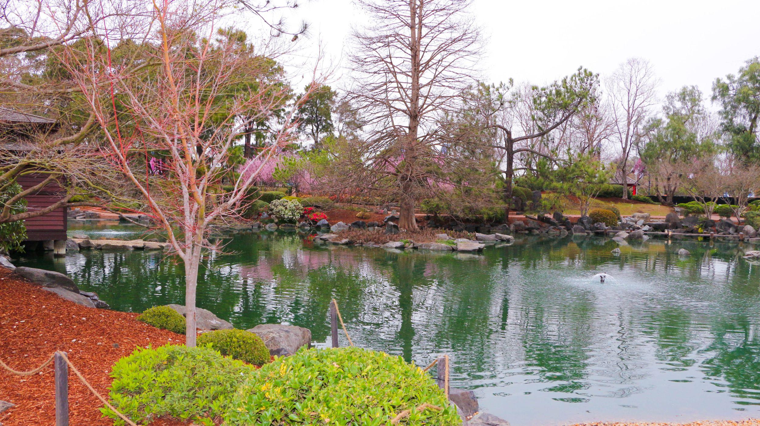 Auburn botanic garden lake