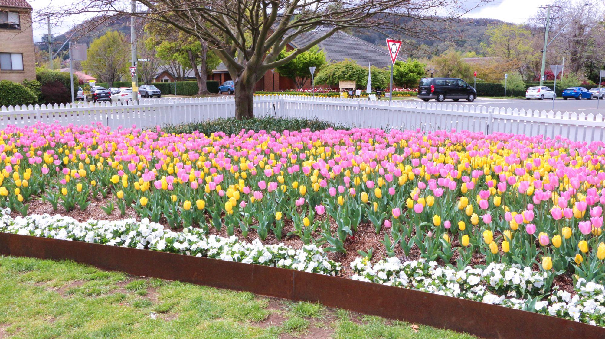 Spring garden festival