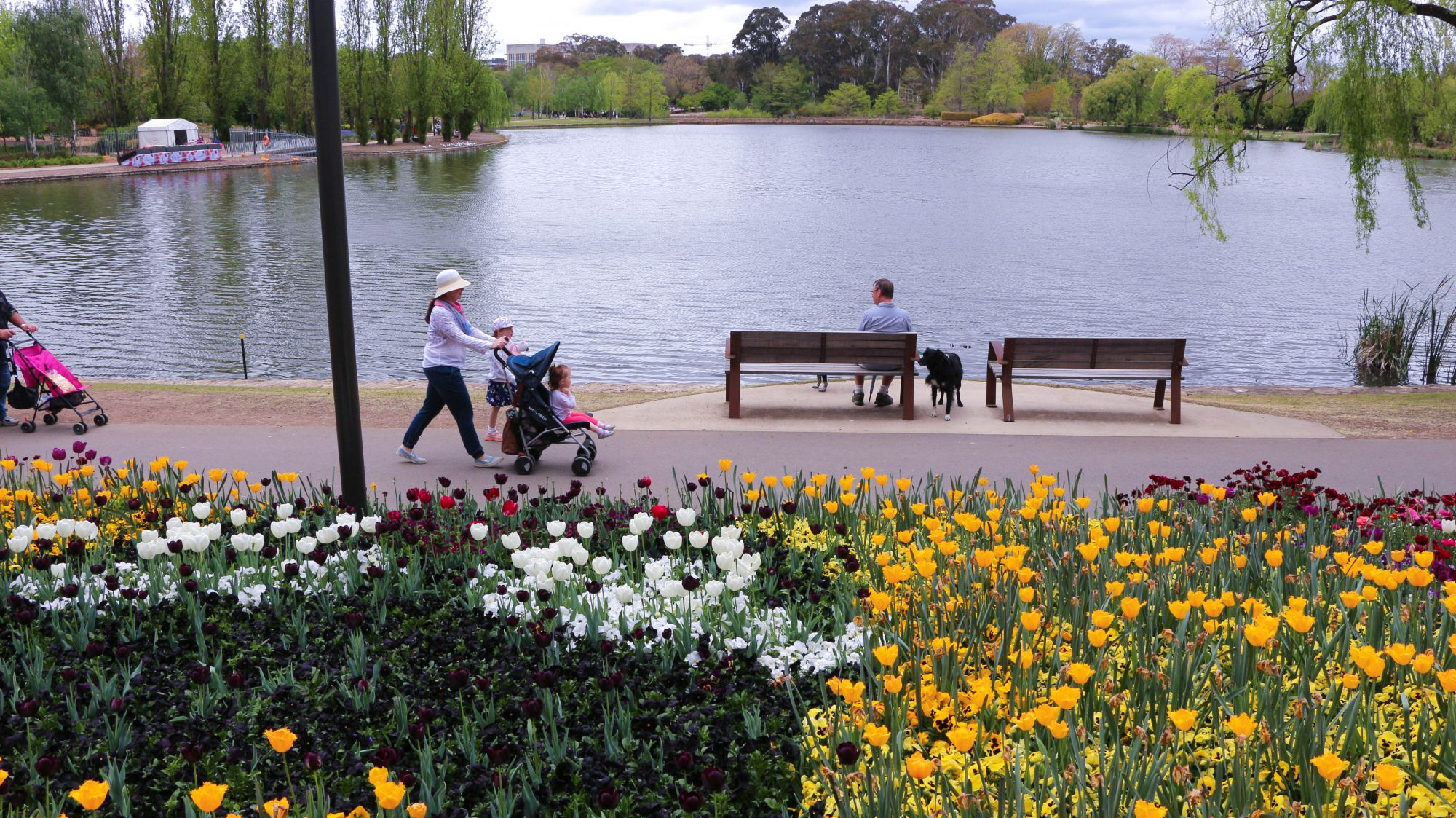 What to do in Canberra