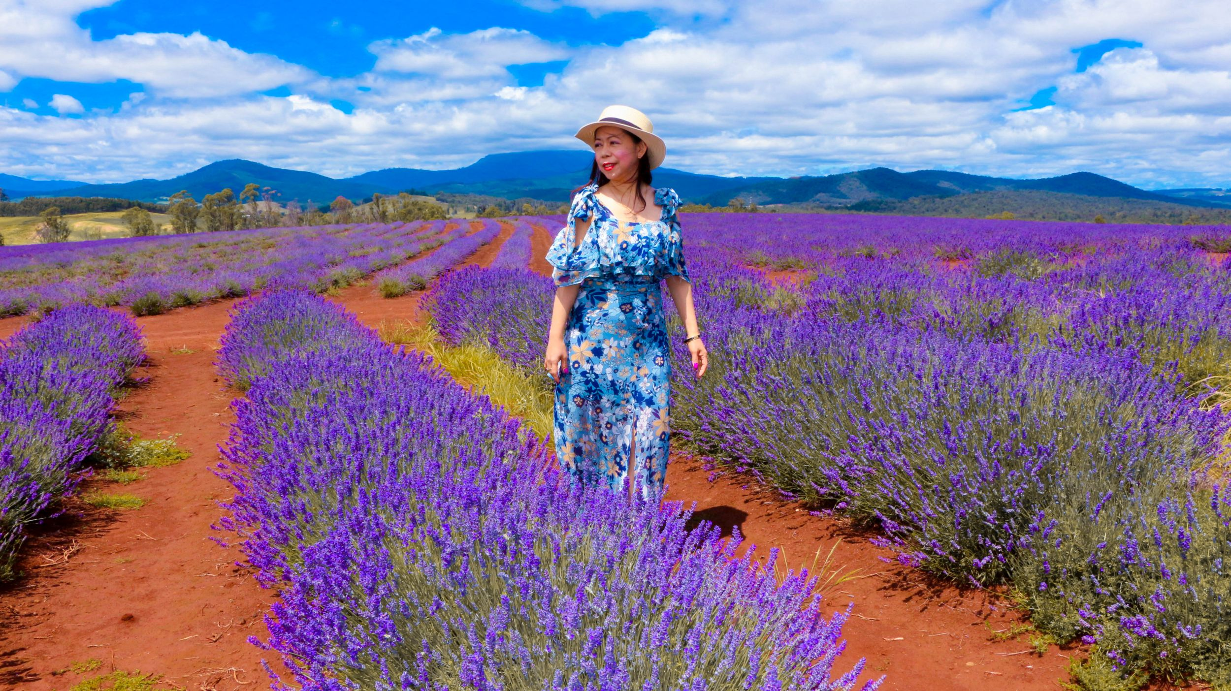 What to wear in Lavender farm