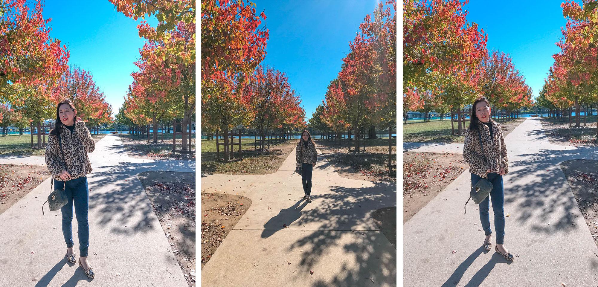 Autumn leaves blog