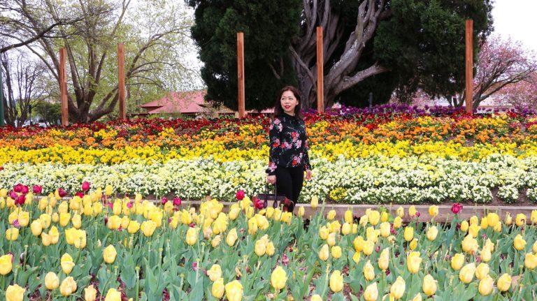 Spring flowers blog