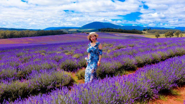 Bridestowe Lavender review